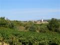 Vue d'Aureilhac. Au loin les Cévennes.