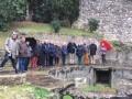 Les zébriniens dans le Castellum divisorium