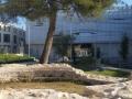 Tour dans le jardin du Musée de la Romanité