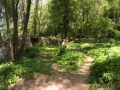 2e niveau de jardins sur les rives de la Beaume