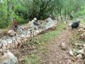 Chantier pierre sèche Mur Coste Joulène