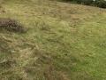 Site de découverte du guerrier gaulois