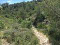 Sentier de la combe de St Dionisy