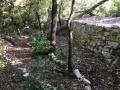 Mur et sentier de pierres