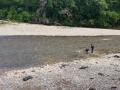 Les orpailleurs dans la Cèze