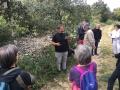 Daniel présente les pierres de calcaire dur de la Montagne