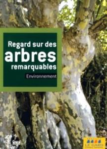 ReGard sur des arbres remarquables