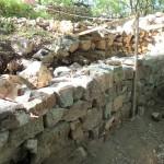 Parement du mur côté enclos