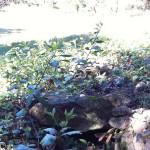 Canalisation pour alimenter le réservoir des 3 cabanes - détail