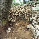 Décharge du mur près de l'entrée de l'enclos