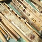 coupe des cannes avec au centre nid d'abeille cotonnière