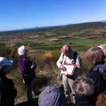 Panorama sur la Vaunage depuis l'oppidum